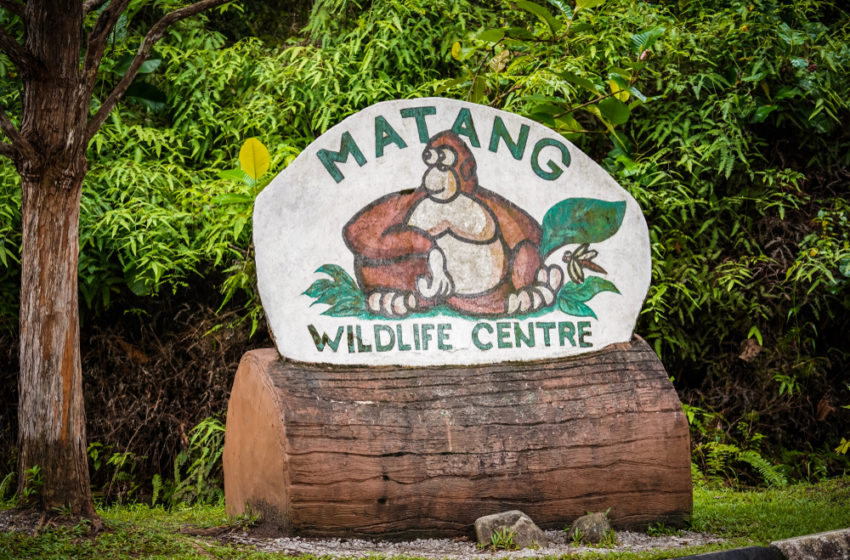 Great locations for eco-volunteering