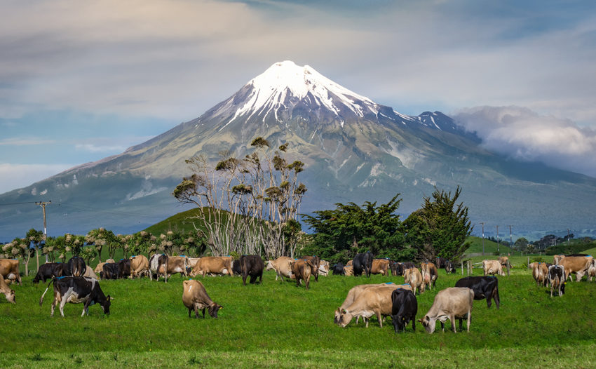 What are the six must-visit natural highlights of North Island, New Zealand?